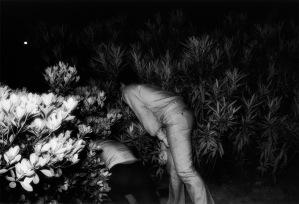 © Kohei Yoshiyuki, 'Untitled', 1971, from the series 'Park'.